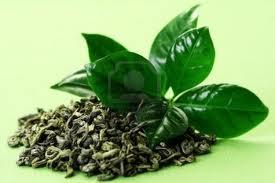 ceai verde antiadipos